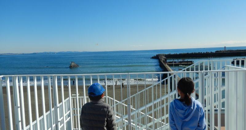 【海山ビギナーズ】1月の山と海の自然に触れよう!!